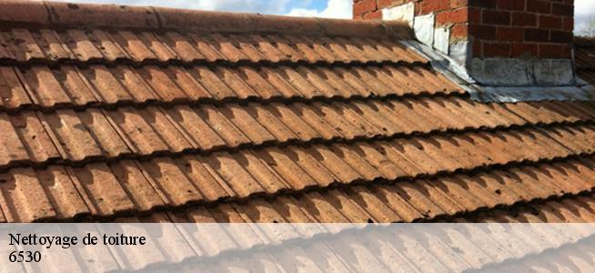 Nettoyage de toiture à Thuin 6530 Tél: 0486 41 57 54