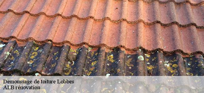 Demoussage de toiture à Lobbes 6540 Tél: 0486 41 57 54