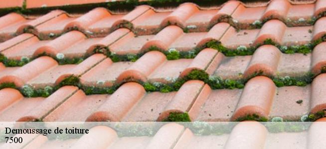 Demoussage de toiture à Tournai 7500 Tél: 0486 41 57 54