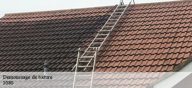 Demoussage de toiture à Molenbeek-saint-jean 1080 Tél ...
